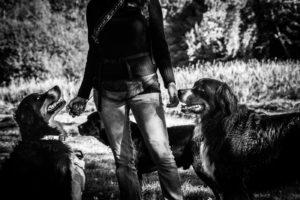 dog-nanny-brussels-valeurs-dog-walking-bruxelles