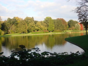 TheDogNanny-Dog-Walking-Cat-Sitting-Brussels-Parc-de-Tervuren