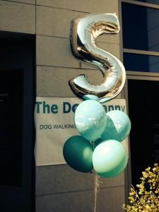 Happy anniversary The Dog Nanny!