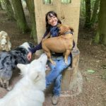 the-dog-nanny-and-her-dogs